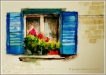 Blue Shutters with Geraniums