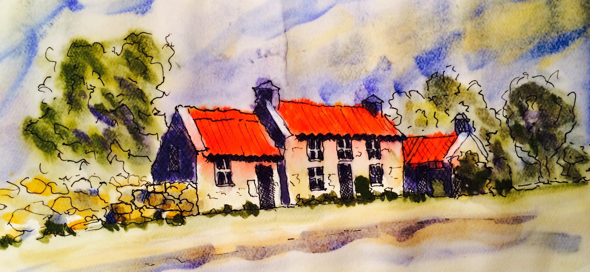 Line Art Watercolor : Watercolor mishap line and wash janna vanderveen