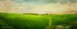 Janna Farmland2
